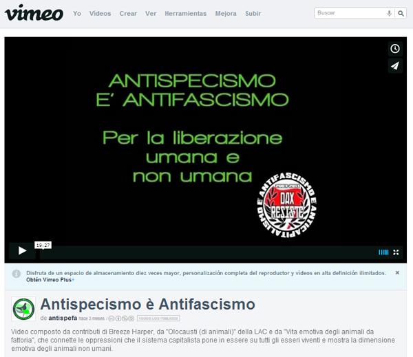 antispefa_video