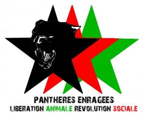 pantheres enrages_logo