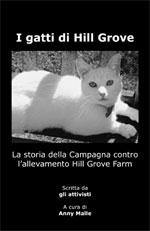 I_Gatti_Di_Hillgrove-3