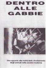 gabbie-1