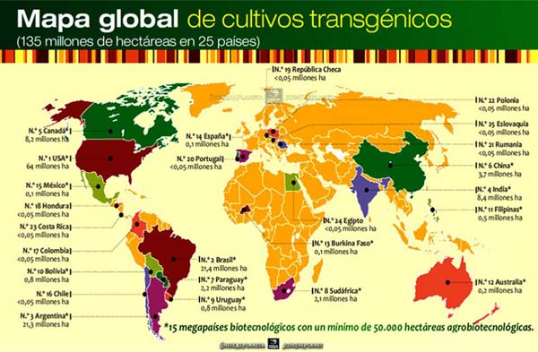 cultivos_transgenicos_low