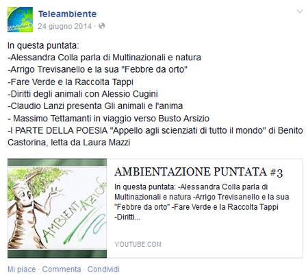 colla_teleambiente_062014