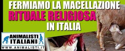 macellazione-animalisti-italiani