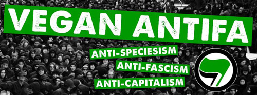 vegan-anti