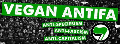 vegan-anti