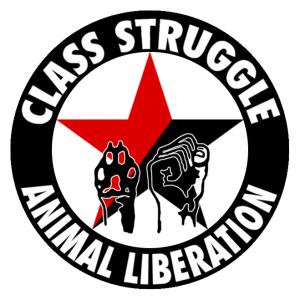 class-struggle-pantheres