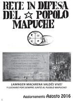 boll-mapuche_2-150