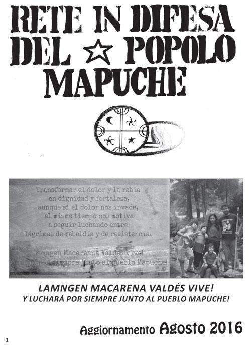 boll-mapuche_2_500