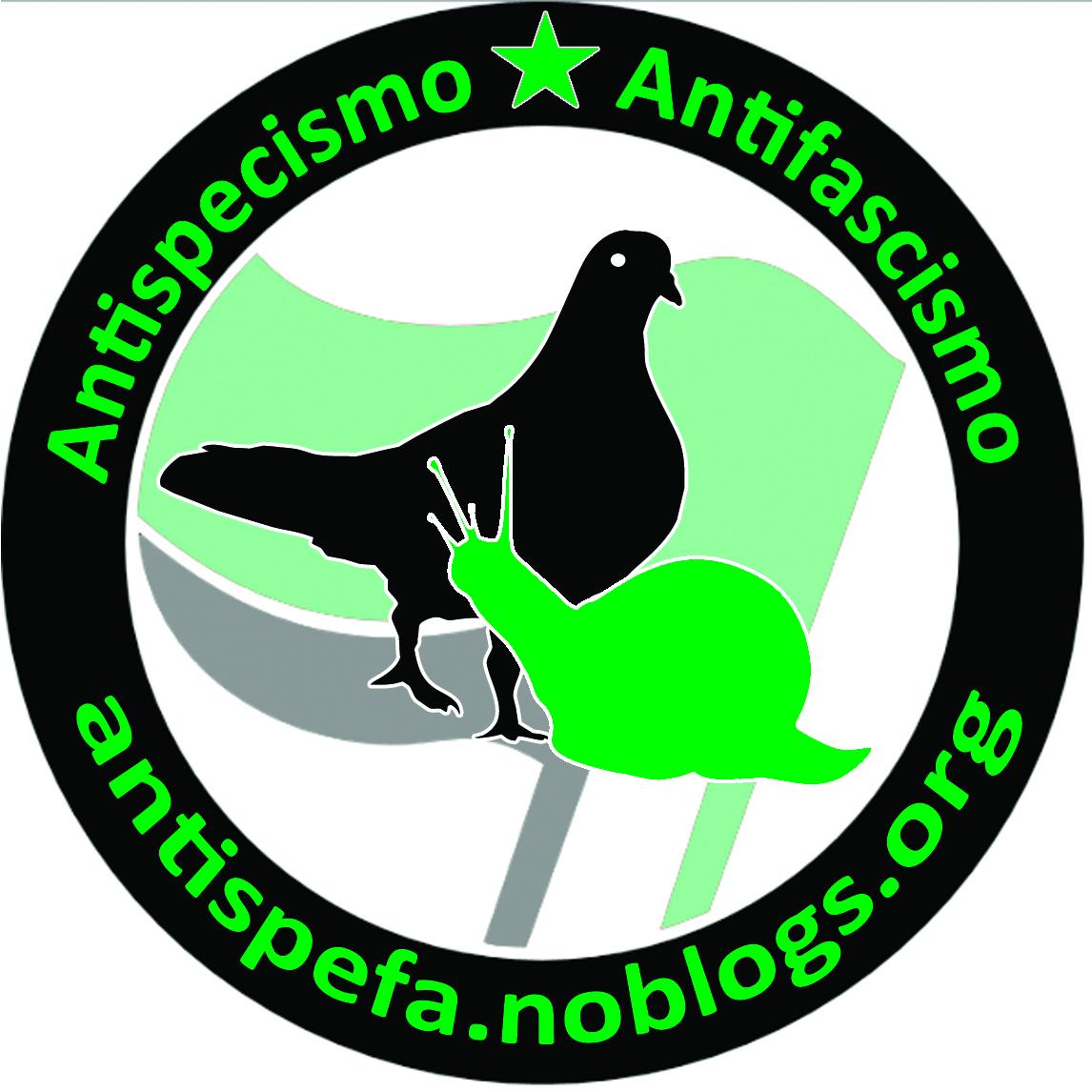 logo_antispefa_quasidef6
